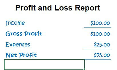 Quick example of a Profit and Loss Report