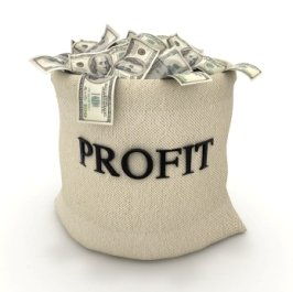Accounting Profit And Loss On Profit & Loss Template Free